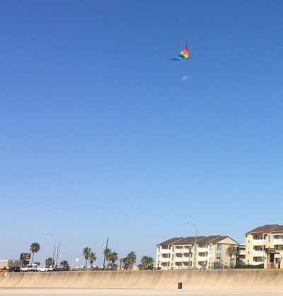 Flash Sport Kite flying high